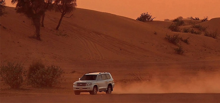 Book Adventure Activities Desert Safari at DesertSafariUAE.ae