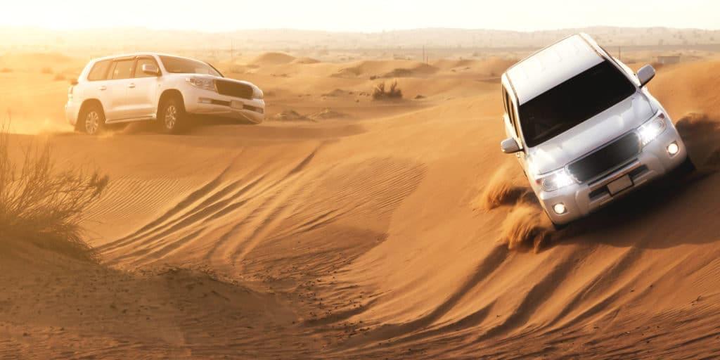 Morning Desert Safari and its activities