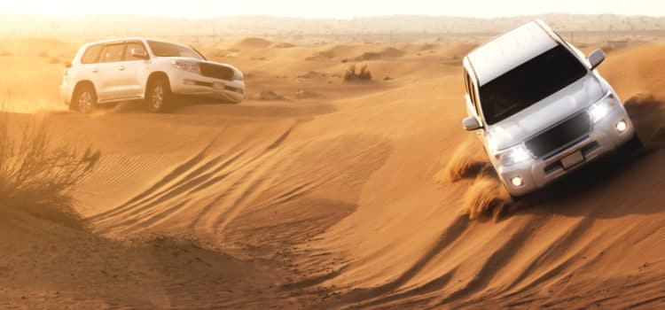 Morning Desert Safari and its activities