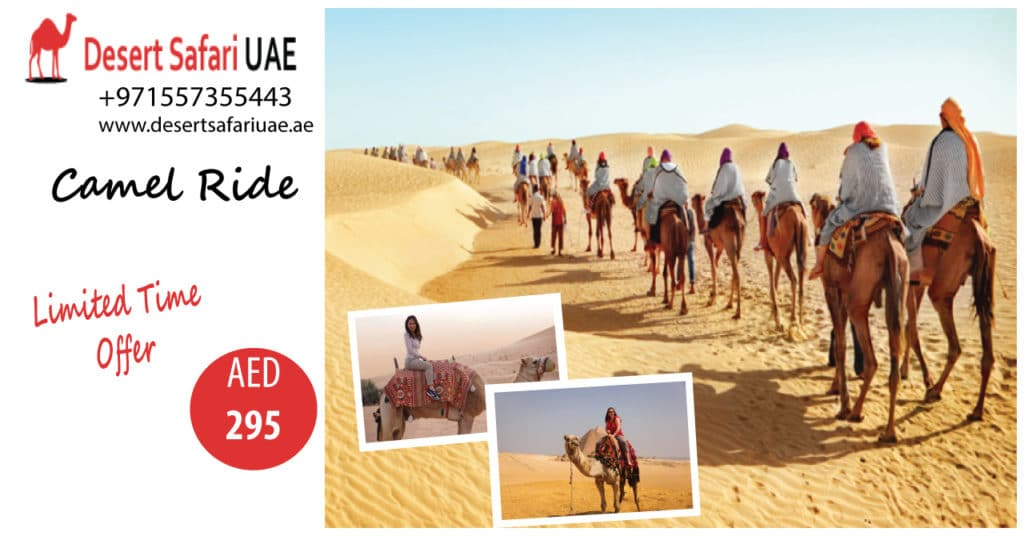 All about Desert safari