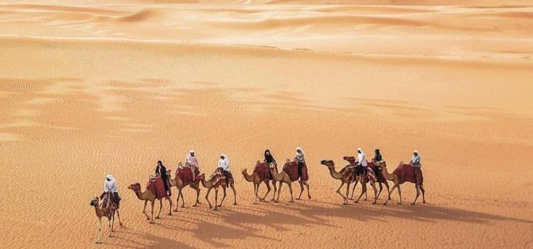 All The Details Regarding Evening And Morning Desert Safari