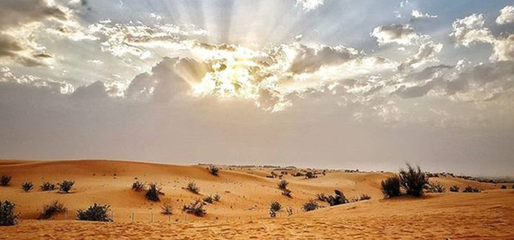 The Unseen Aspects of Desert Safari Dubai