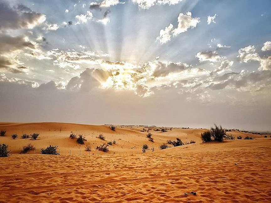 Desert Adventure Sports Activities in Desert Safari
