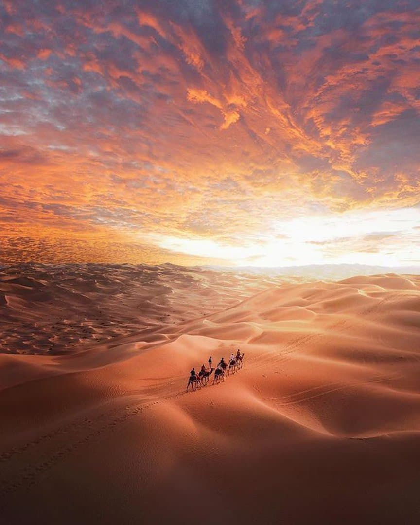 Know about the unknown things of Desert Safari Dubai