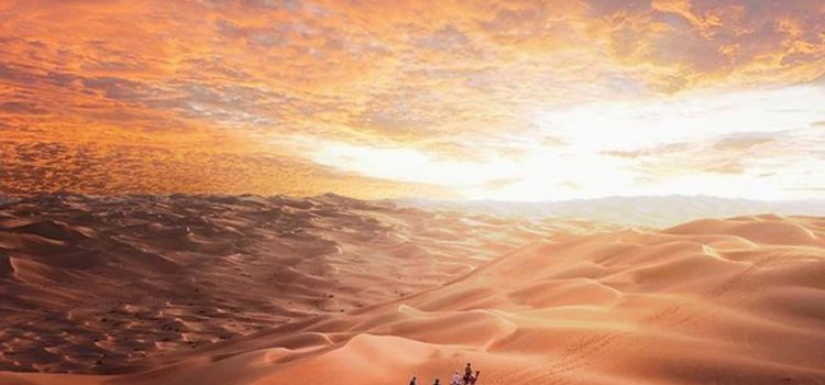 Have a memorable Desert Safari Experience