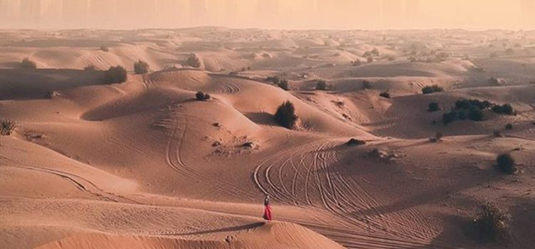 The Notable Desert Of Dubai Desert Safari