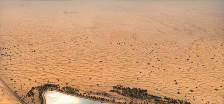 The unknown aspects of evening desert safari