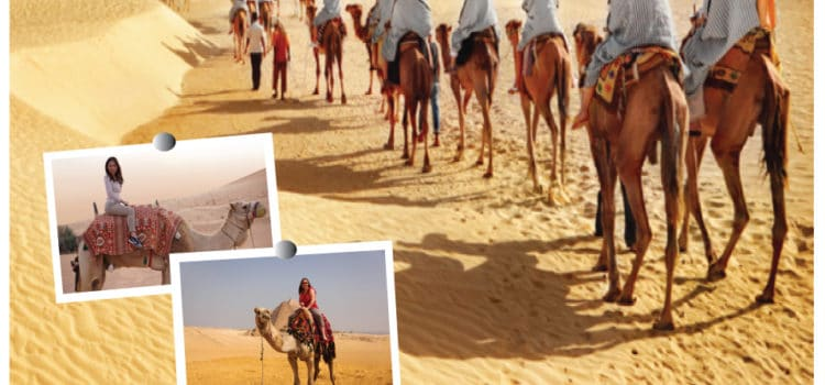 The Dubai Dessert Safari trip in Dubai that you will enjoy