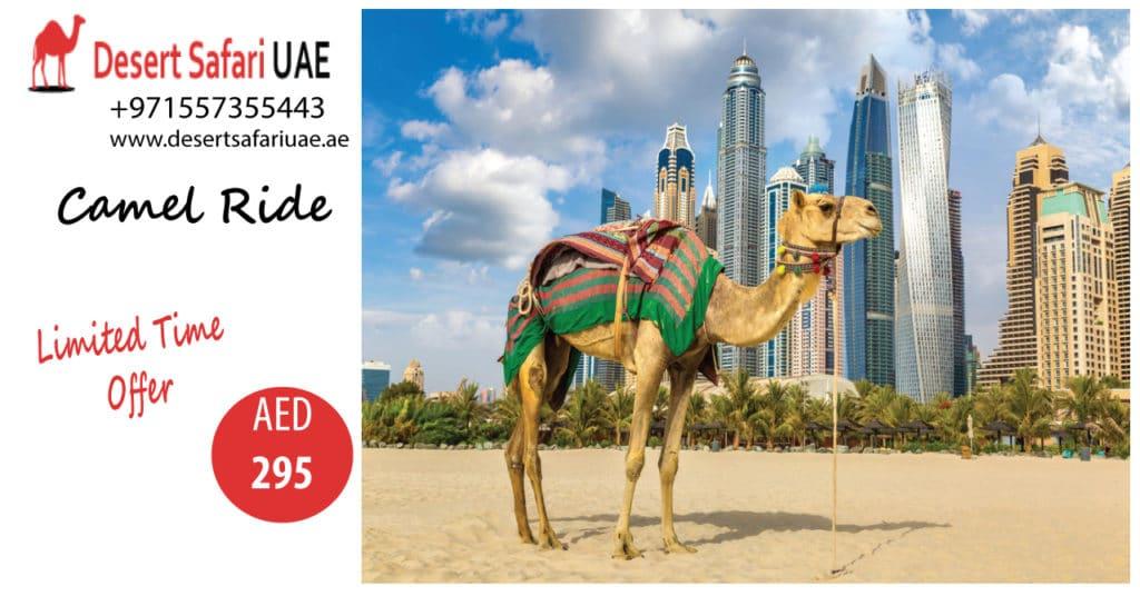 Interesting Packages of Dubai Desert Safari