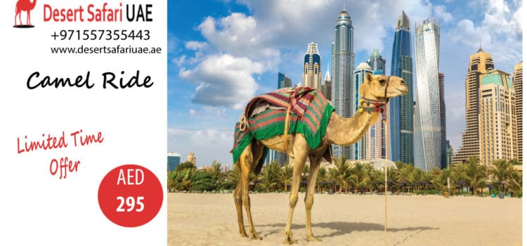 Interesting Packages of Dubai Desert Safari