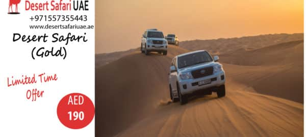 THRILLING ACTIVITIES AT DUBAI DESERT SAFARI