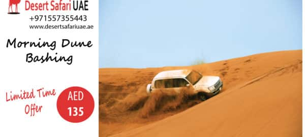 AN AMAZING ADVENTURE AT DUBAI DESERT SAFARI